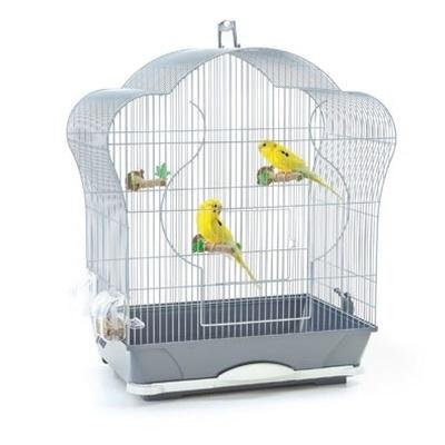 Vogelrijk - Dierenbenodigdheden
